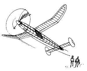 2 guys flying gollywok300