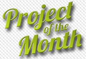 Project of the month 300