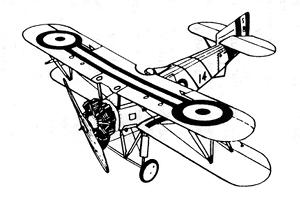 circle biplane 300