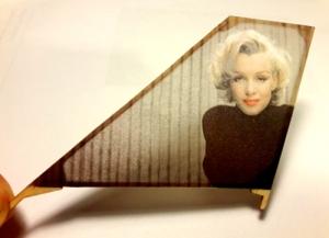 marilyn rudder tissue pic 500